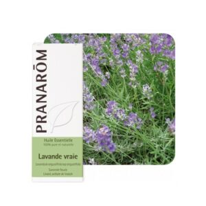PRANAROM Lavanda eterično ulje (Lavandula angustifolia)