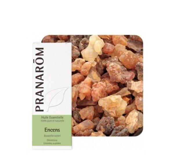 PRANAROM Tamjan arapski eterično ulje (Boswelia carterii)